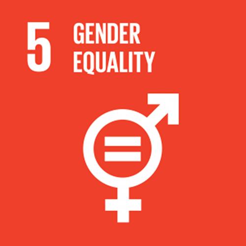 SDG goal 5 – Gender equality