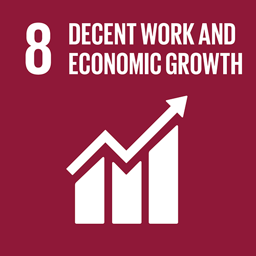SDG goal 8 – Decent work and economic growth