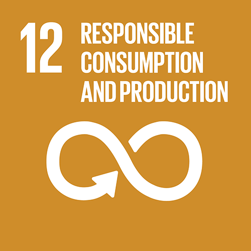 SDG goal 12 – Responsible consumption and production
