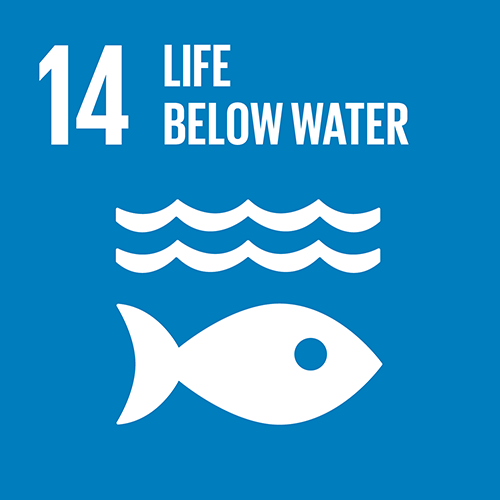 SDG goal 14 – Life below water