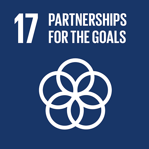 SDG goal 17 – Partnerships for the goals